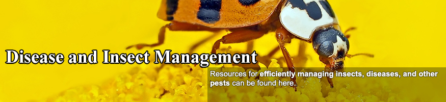 Pest and Disease Management